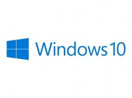 Microsoft Windows 10 Home 64 Bits DSP DVD - Software