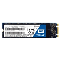 Western Digital Blue PC SSD 500GB - Disco SSD M.2